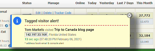 Console alerts notify you when tagged visitors access your website(s)